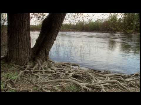 Microbes in the Mississippi (Mississippi Metagenomics at UMN)