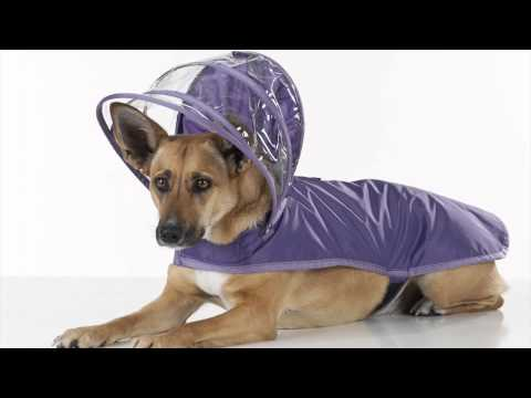 Push Pushi Dog Raincoat