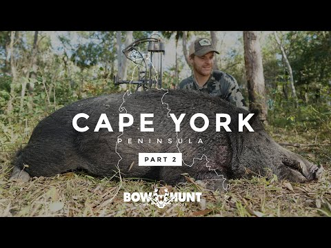 Cape York 2.0 I WILD BOAR BOWHUNTING FILM [Bowhunt Downunder]