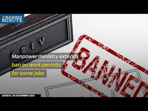 Manpower ministry extends ban on work permits for some jobs