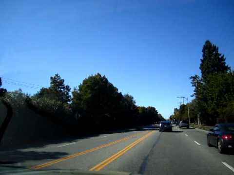 Tourist Palo Alto, CA 01