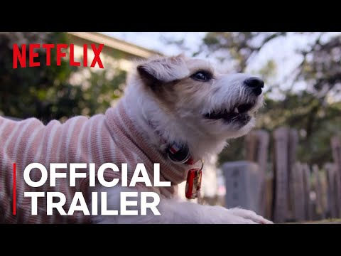 Rachel Ramsey - The trailer for Dogs, a new Netflix documentary, may make you cry