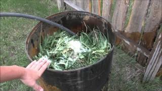 видео Народные рецепты удобрений для огорода