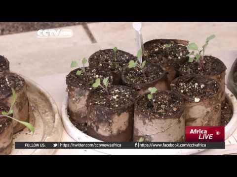 South Africa uses earthworms to recycle organic waste in
