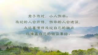 《 佛言佛语 04》开启智慧,心灵慈航💖