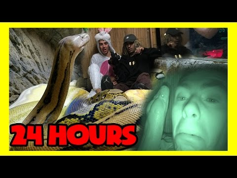 24 HOURS IN A DEADLY SNAKE CAGE ( all night / 24 hr challeng