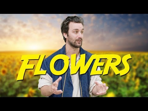 Flowers - Epic NPC Man (picking up quest items in games| Viva La Dirt League (VLDL)