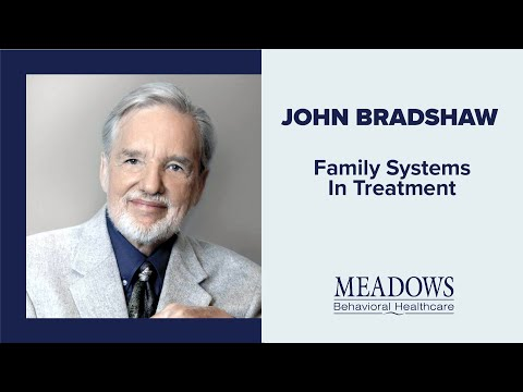 john-bradshaw---family-systems-in-treatment
