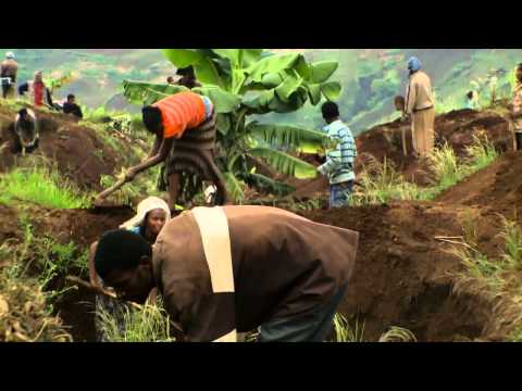 Women farmers increasing productivity of farms. Ethiopia—thinkEQUAL