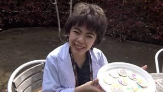 沢口靖子のリッツパーティーシリーズ! 今回の訪問者は誰だ? 「まねチ...