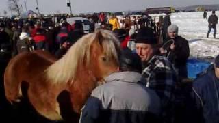 Wstępy 2010 - Skaryszew koło Radomia