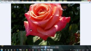 Создать блеск на картинке в онлайн сервисе