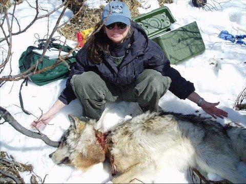 Sarah Palin bear hunting in Fairbanks, Alaska. - YouTube