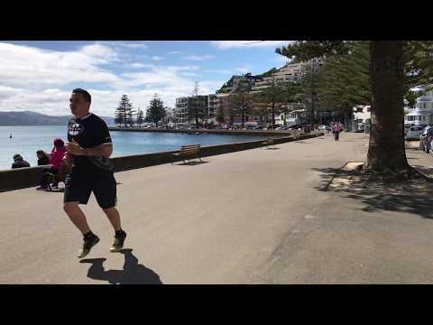 Wellington Rush Hour