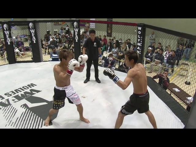 WFAT VIII   Kickboxing   Yamada vs Katsumi
