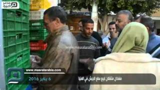 مصر العربية | منفذان متنقلان لبيع سلع الجيش في المنيا