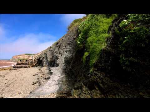 Joggins Fossil Cliffs (World Heritage Site) Photo Gallery