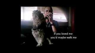 Singing Yorkshire Terrier Dog Howling His Sad Story.. Monty's Tails Of Woe