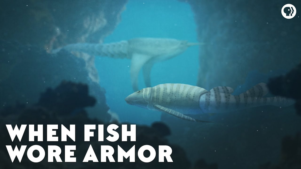 when-fish-wore-armor