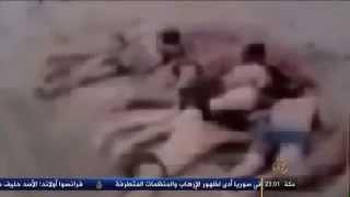 تنظيم الدولة يعدم أكثر من 250 من جنود النظام