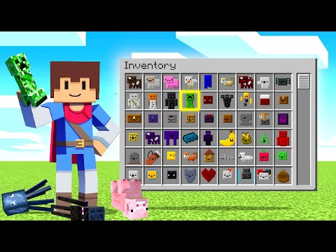 Minecraft But EVERY MOB Is An ITEM!