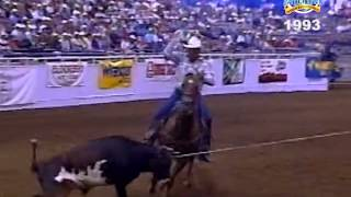 bfi team roping top 5 1993