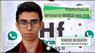 HF Brasil Entrevista - Rogério Bosqueiro (Manga)