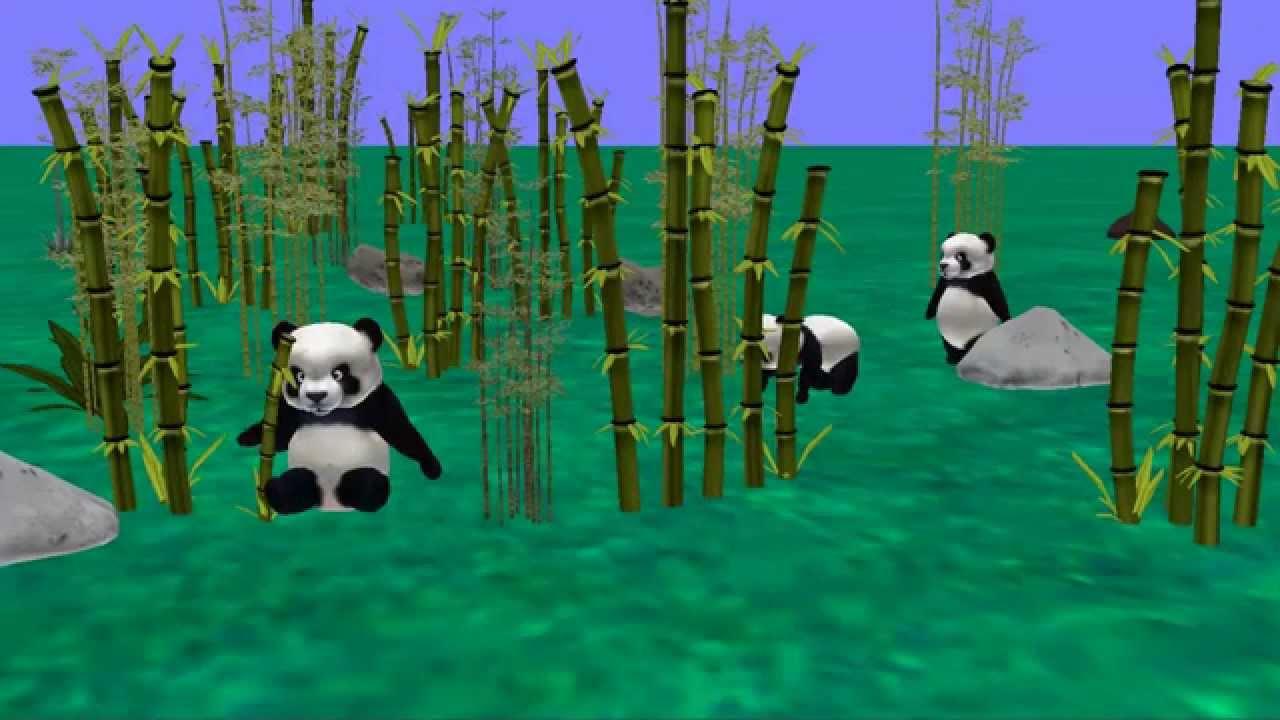 Adaptations of Giant Panda - YouTube