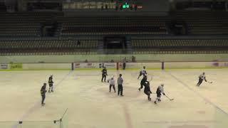 Хоккей ЛНХЛ Заводы-Легион 19.12.2017 г. 1 пер. Пермь