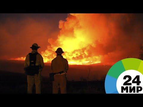 Президент Бразилии признался в нехватке денег на тушение пожаров в Амазонии
