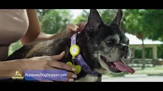 AsSeenOnTV.pro & Kevin Harrington - Runaway Dog Stopper :60
