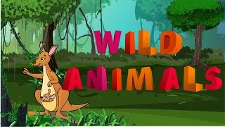 "different kinds of ""wild animals"" with animation and pictures"