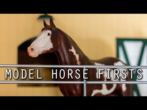 Model Horse Firsts Tag!