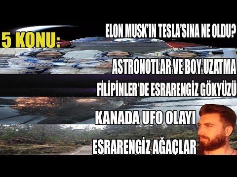 5 KONU: Elon