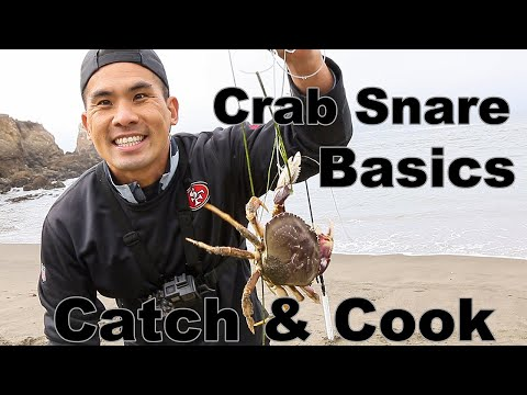 How To Crab Snare Catch & Cook