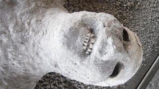 【閲覧注意】衝撃の大噴火で逃げ遅れた古代ローマの人々 幻の都市ポンペイを襲った悲劇 thumbnail