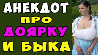 АНЕКДОТ про Двух Быков и Доярку Самые смешные свежие анекдоты