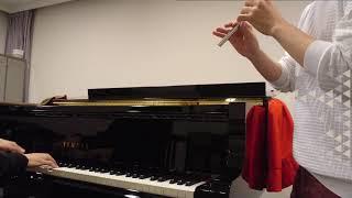 【FFX】『ザナルカンドにて』をティンホイッスルとピアノで共演してみた