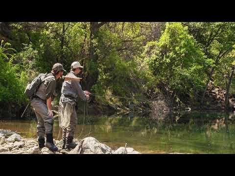 Putah Creek Unlocked – Jordan Romney
