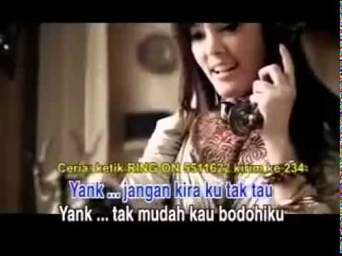 video karaoke wali band yank