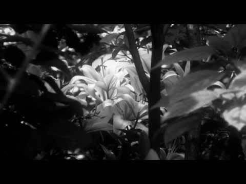 Saint Therese of Lisieux, film, her Last Conversations, Catholic Saint
