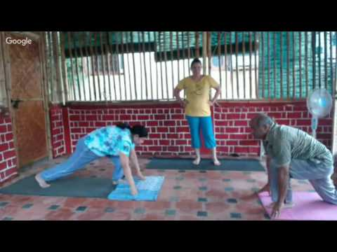Basic Satyananda Bihar School Flow