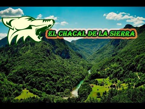 El Corrido de La Coneja - El Chacal de La Sierra (de Guerrero)