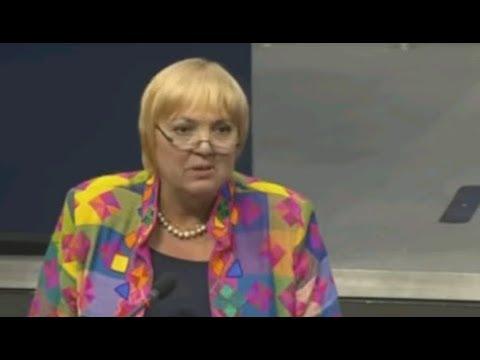 Regierungsbefragung 2019 Claudia Roth Norbert Kleinwächter Petr Bystron