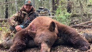 Hunting GIANT Bears in Canada!! {Catch Clean Cook}