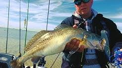 Corpus Christi fishing. FAT WINTER TROUT! NEW PB!