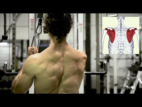 STRUGGLING To Grow Your Lats? Try This Back Exercise Out!