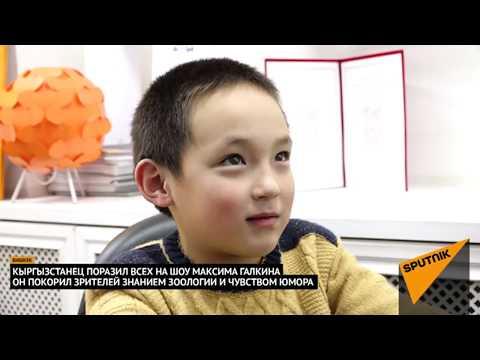 Кыргызстанец поразил всех на шоу Максима Галкина знанием зоологии и чувством юмора