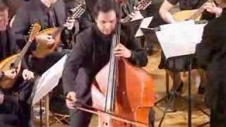 K.D. von Dittersdorf Concerto Double Bass Mandolin Orchestra