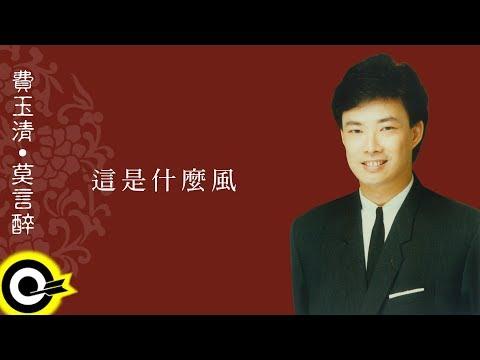 費玉清 Fei Yu-Ching【這是什麼風】Audio Video